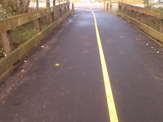 King County claims it can't narrow the trail because of trail standards, so trees have to be removed. Baloney. This bridge over Issaquah Creek at 62nd St. proves the County can narrow the trail. This is 12 ft wide, not the 18 in the standards. Looking north.